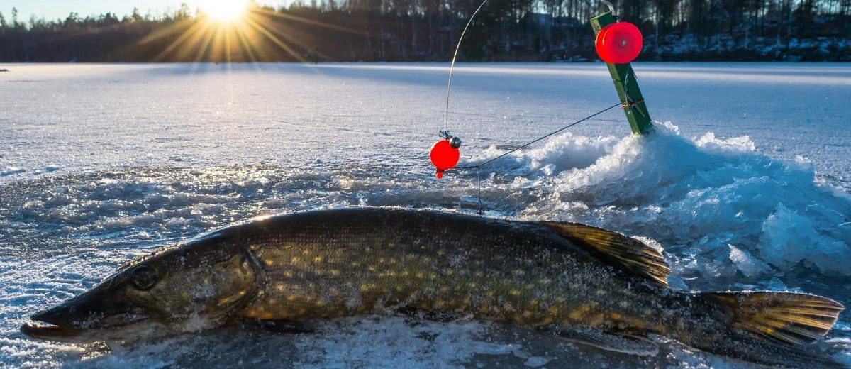 Best Places To Go Ice Fishing in Michigan - Travel with Pedro