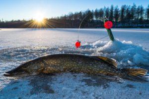 Where To Go Ice Fishing in MIchigan